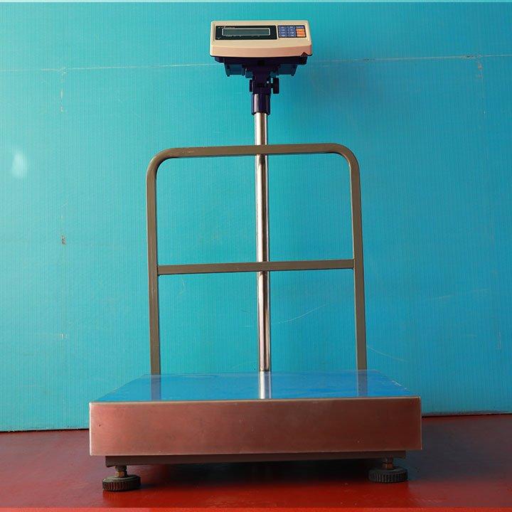 Balanza Digital de Plataforma e-Accura SB53 de 500 y 600 Kg